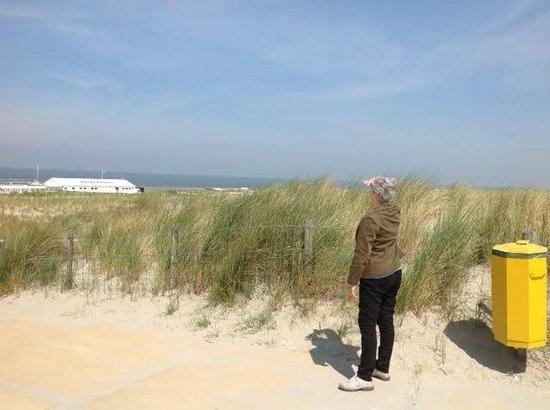Hoek van Holland beach: Looking for that boat!