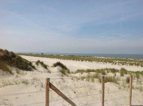 Hoek van Holland beach: Long, clean Beach