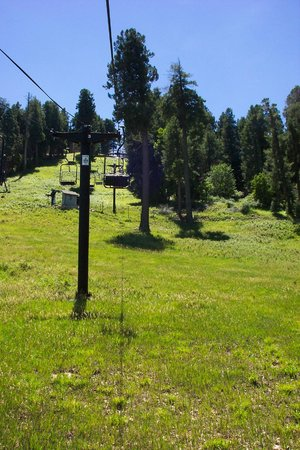 Mt. Lemmon Scenic Byway: Lush Mountain Top &  Skiing in WInter