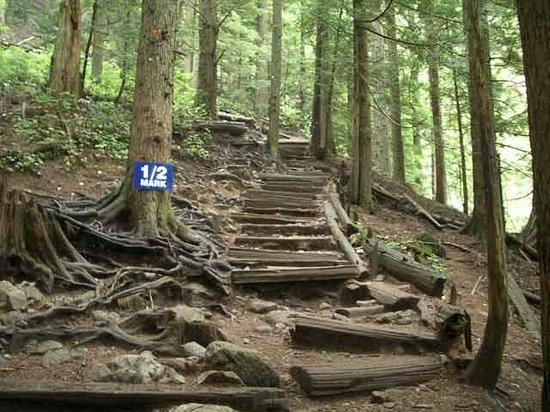 The Grouse Grind: typical grind terrain
