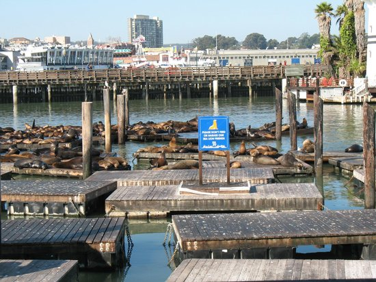 Holiday Inn Express Hotel & Suites San Francisco Fisherman's Wharf : Pier 37