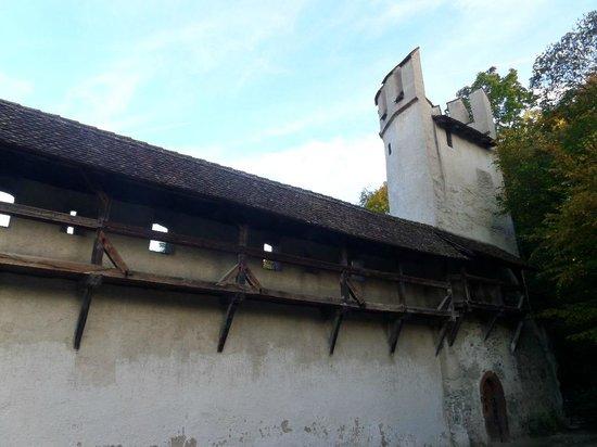 Basler Papiermühle: Остатки крепостной стены Базеля у музея бумажной мануфактуры