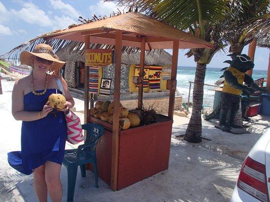 Senor Iguana: coconut stand nearby