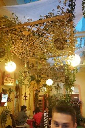 "Thajska Restaurace Siam Orchid: la ""terrasse"""
