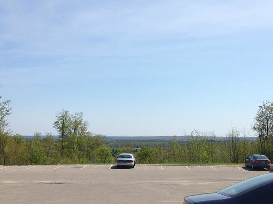 Treetops Resort : Parking lot view