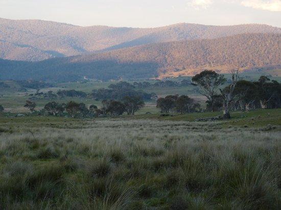 Namadgi National Park: Sunset in the bush