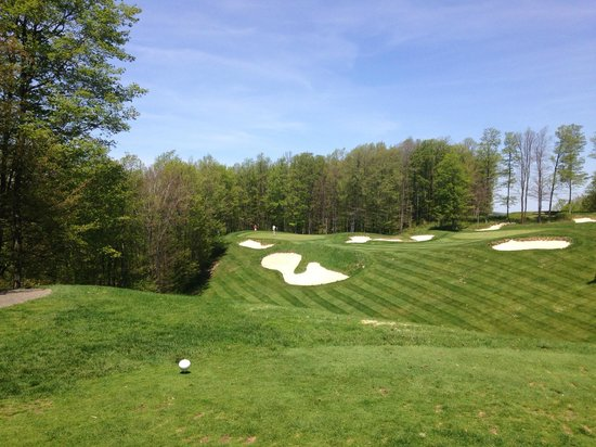 Treetops Resort : Threetops #2