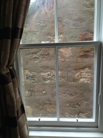 Glen Mhor Hotel & Apartments: The best view in the hotel!!
