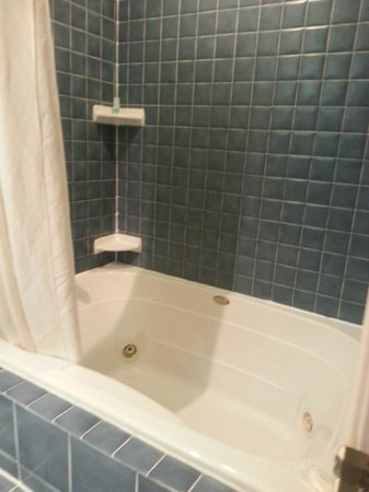 Comfort Suites Fort Wayne : Bath tub actual size its still pretty big both of us fit