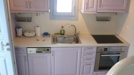 GT Suites: the Blue Rose kitchen