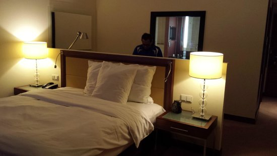 Hilton Warsaw Hotel & Convention Centre : Habitación (con tv hasta en el baño)
