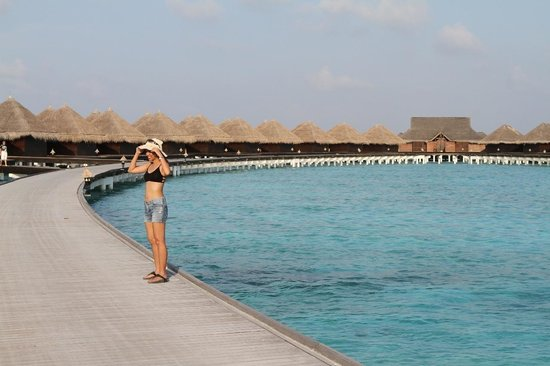 Taj Exotica Resort & Spa: Wow