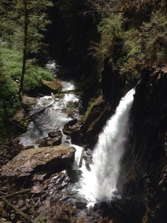 Drift Creek Falls Trail: Drift Creek Falls.