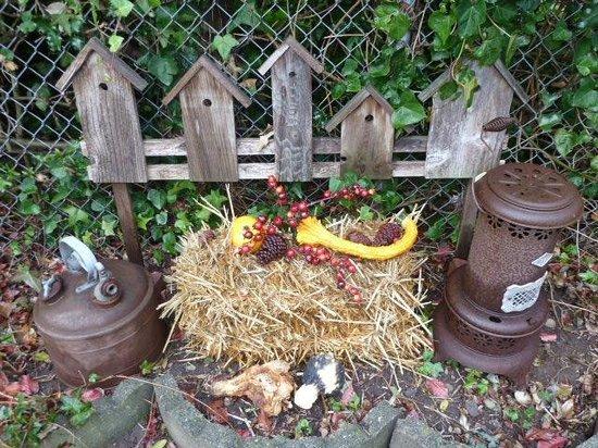 Plum Duff House: In garden