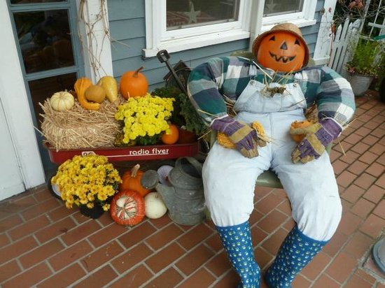 Plum Duff House: Harvest time