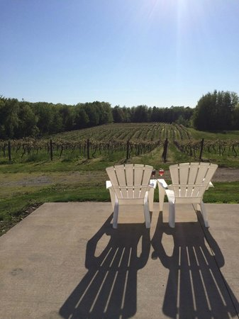 Just one part of the amazing view at Lakeview Wine Cellars,