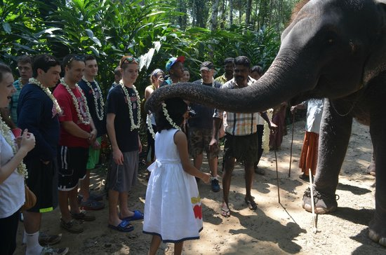 Elephant Junction - Day Tours: G 2