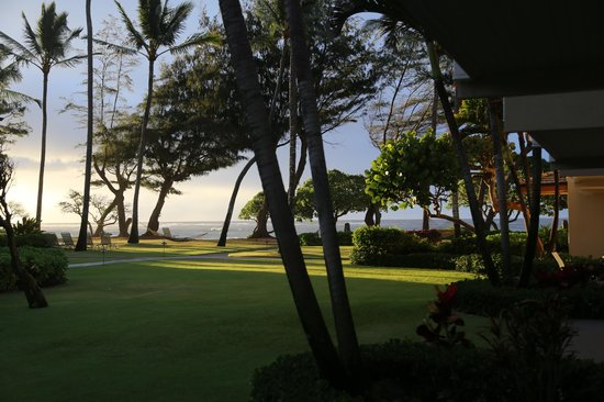 Kauai Coast Resort at the Beachboy: View from my Garden View room