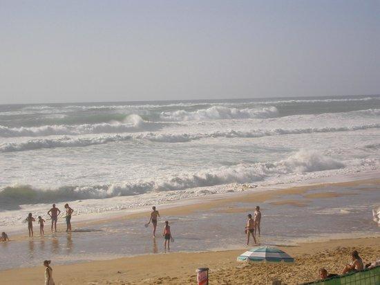 Cap'tain Bar : hugh waves