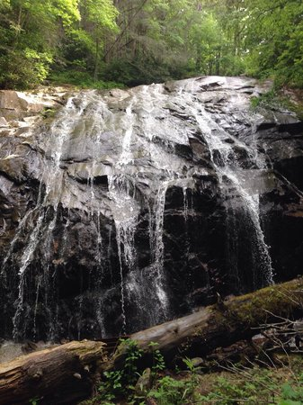 Glen Burney Trail: Well worth the hike if you have the chance go take the hike very nice. From top to bottom. You w