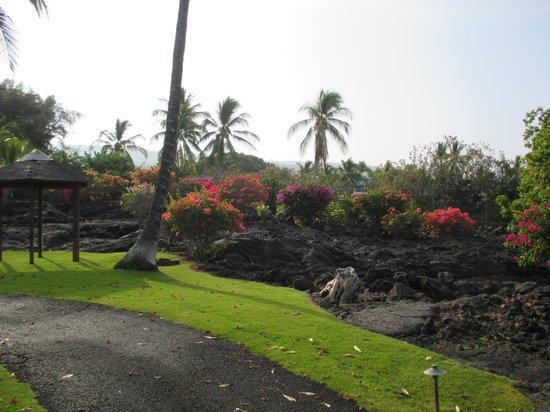 Sheraton Kona Resort & Spa at Keauhou Bay: Hotel Srround
