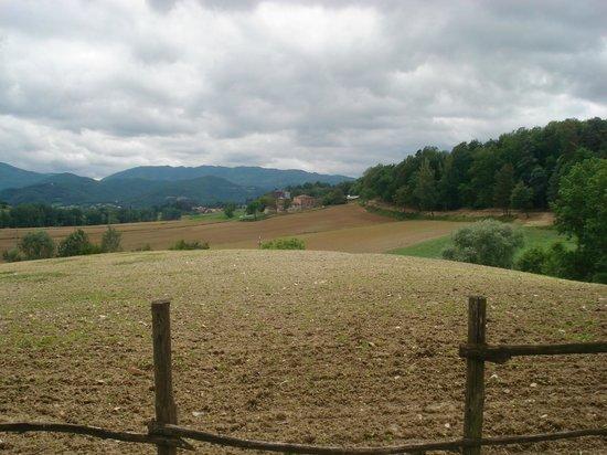 """Agriturismo """"La Topaia"""" : Our View"""