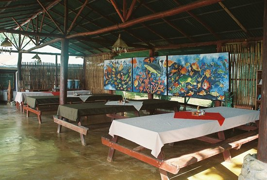La Leona Eco Lodge: Where we ate was a work of art!!!