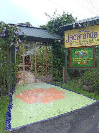 Jacaranda Hotel and Jungle Garden: Entrance to hotel