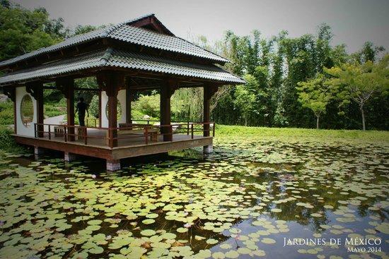 Jard n estilo japon s picture of jardines de mexico for Jardines pequenos tipo japones