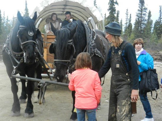 Black Diamond ATV Tours: Covered Wagon Tour