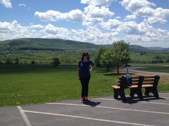 Howe Caverns Motel: View from the motel