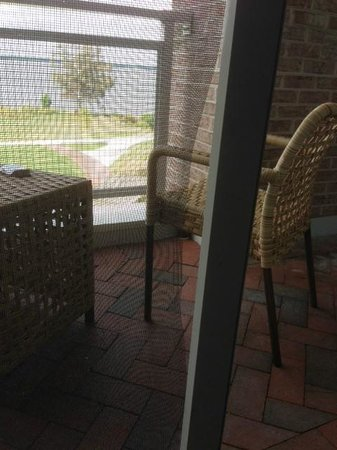 Hyatt Regency Chesapeake Bay Golf Resort, Spa & Marina: Torn screen on porch