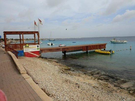 Dive Friends Bonaire: oefen bad