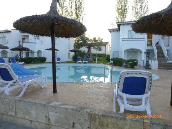 Seaclub Mediterranean Resort: Flott Basseng