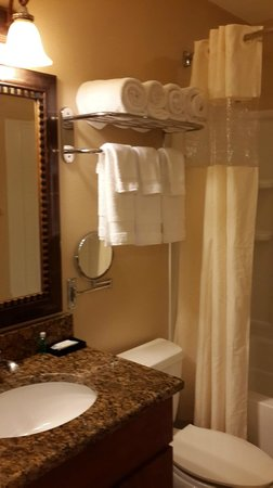 Saratoga Resort Villas : Baño superior