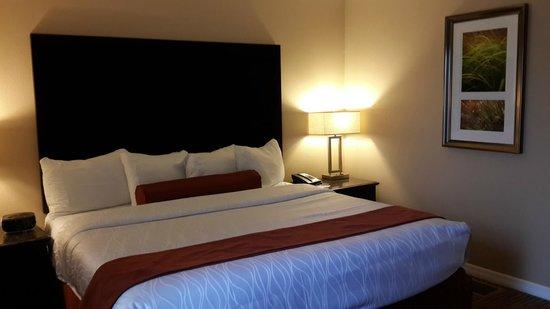Saratoga Resort Villas : Habitacion planta baja