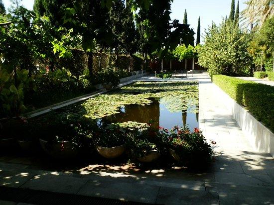 La Concepcion Jardin Botanico Historico de Malaga: Estanque junto a la entrada