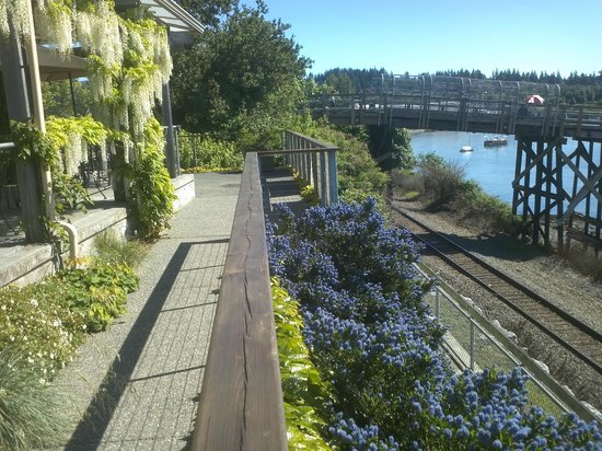 Keenan's at the Pier: White wisteria and California lilac (Ceanothus).