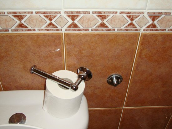 Hotel Villasol: Broken toilet roll holder! Housekeeping kept putting it upright, it kept falling off!!!