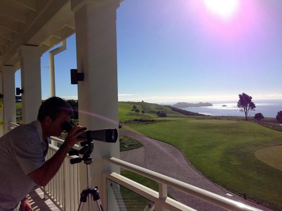 The Lodge at Kauri Cliffs : The view from the Lodge.