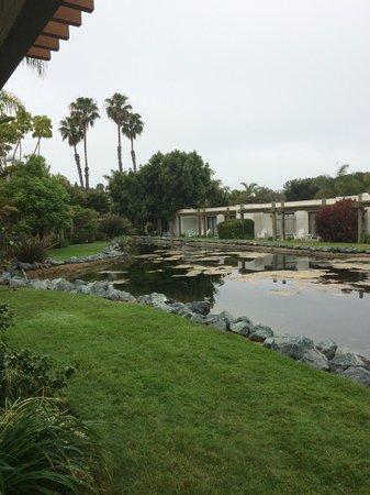 Paradise Point Resort & Spa : Patio trasero de un conjunto de bungalós