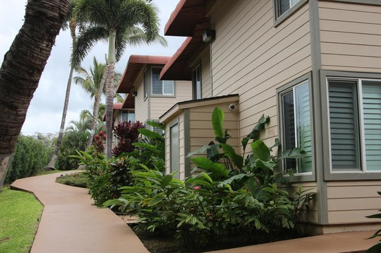Days Inn Maui Oceanfront: Территория
