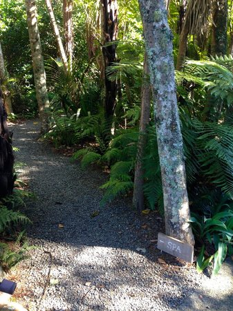 The Lodge at Kauri Cliffs : Path to the Spa.