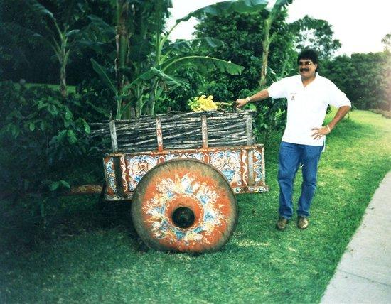 Costa Rica Marriott Hotel San Jose : In the Garden