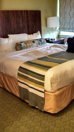 Sea Crest Beach Hotel: ocean view room
