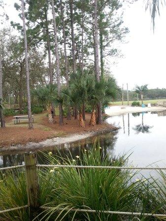 Champions World Resort: lagoon