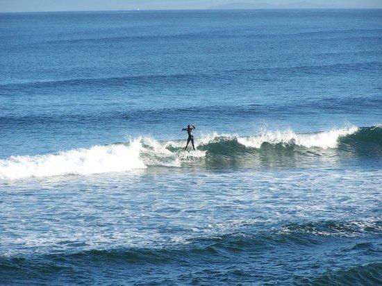 Lanai at the Cove: Surfers