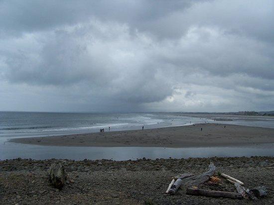 Lanai at the Cove: Clam Digging