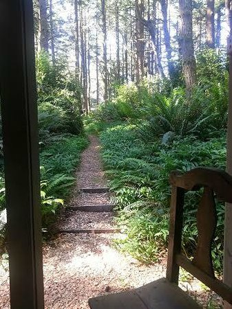 WildSpring Guest Habitat: Trail from cabin