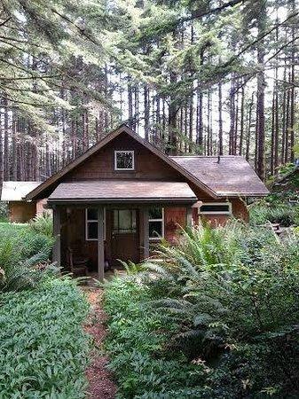 WildSpring Guest Habitat : Barenton-cabin 4